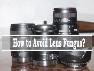 How to Avoid Lens Fungus